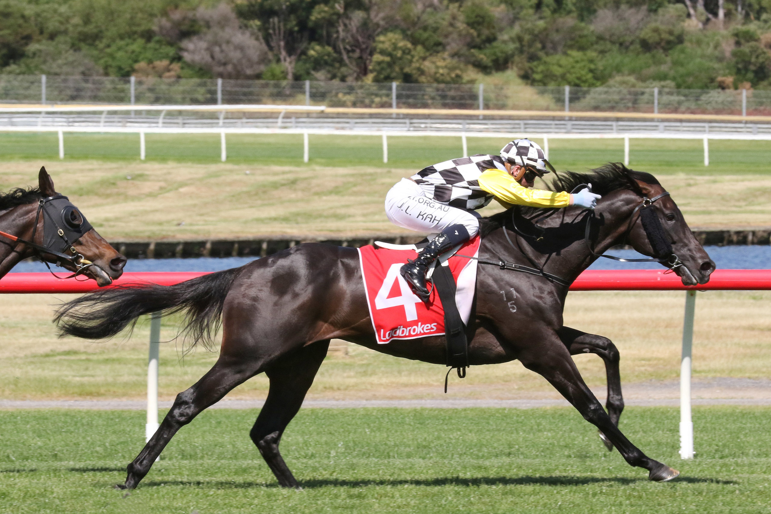 Sandown Cup 2021 Field Tips Betting Odds Results