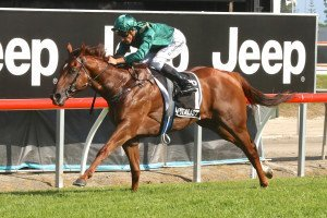 Golden Slipper 2016 favourite Capitalist