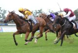 Victory in the Group Two Breeders' Classic at Warwick Farm is likely to prompt trainer John O'Shea to raise the bar